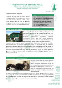 Newsletter vom November 2013